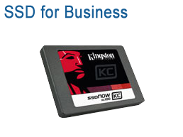 Kingston SSD for Business